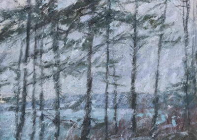 Among The Firs—Snowfall At Dusk