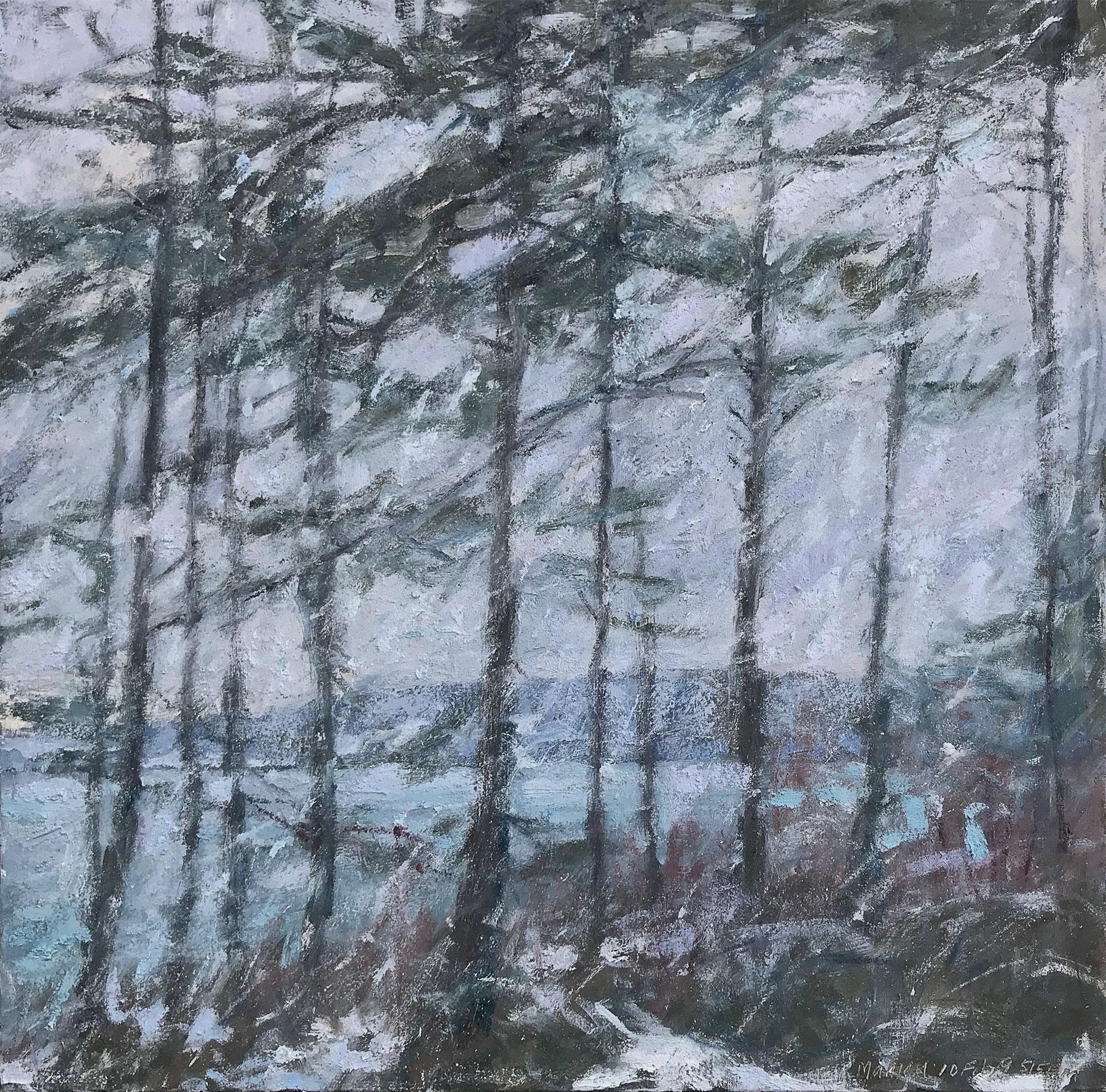 Among The Firs—Snowfall At Dusk