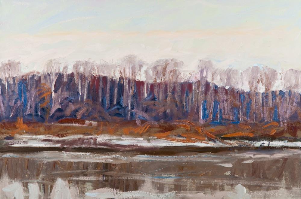 Cold Agate River—Green Opal Sky, St Aubert's Island