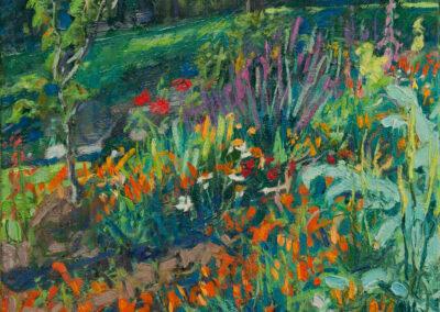 Poppy Garden—Evening Light