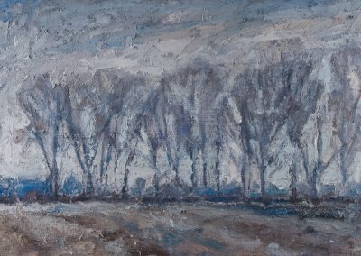 Snowstorm at Dusk—Cottonwood Grove