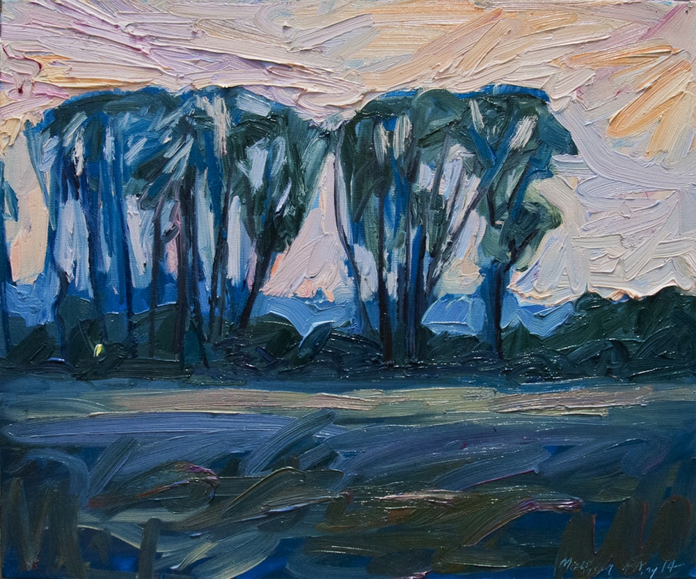Sunset in the Riverbottoms—Steedman