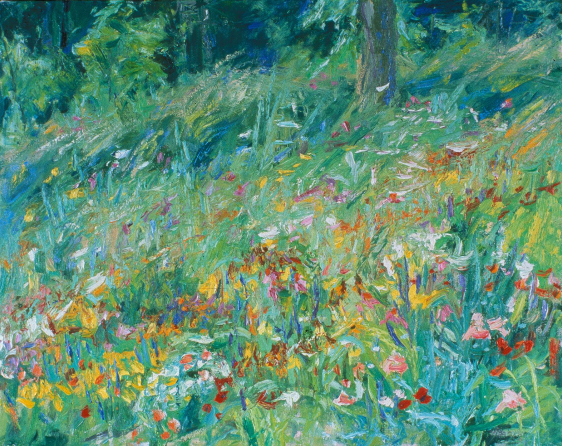 Wildflower Meadow—Franklin