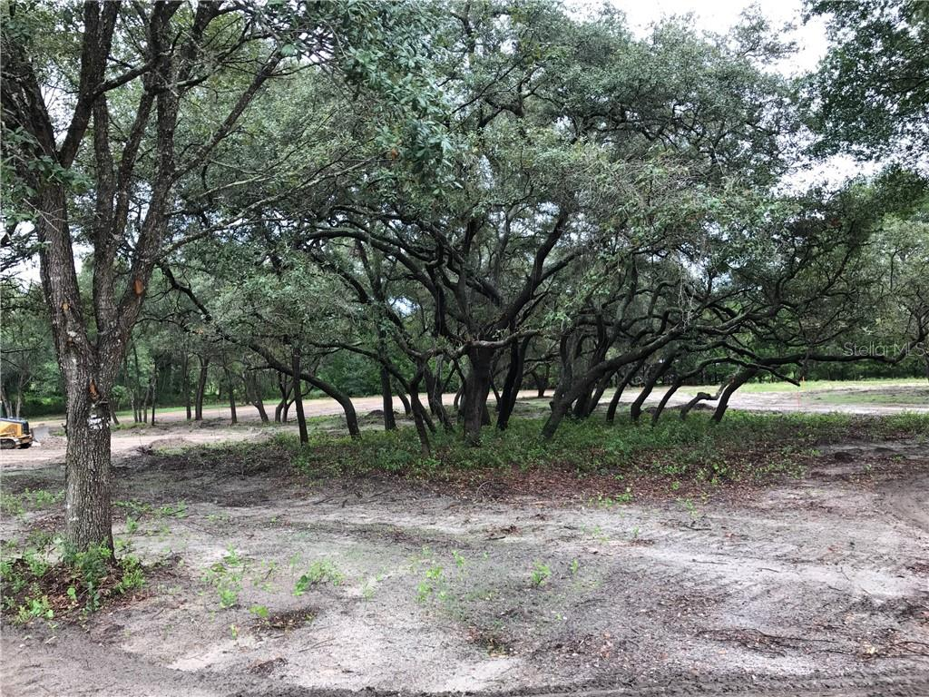 21401 S BUCKHILL RD, CLERMONT, Florida 34715