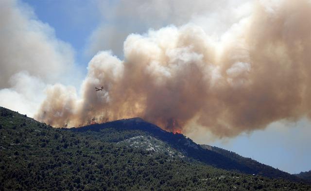 fire damage Paso Robles