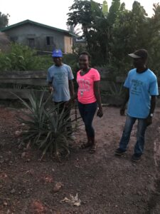 Jusu, Jennifer, and MOH volunteer inspect two pineapple plants