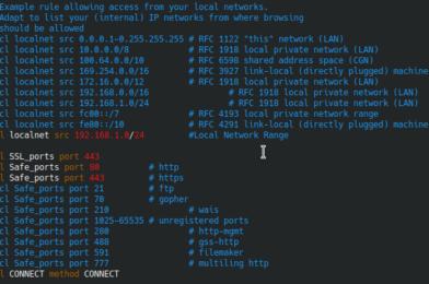 Squid Proxy Setup Ubuntu 20.04