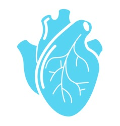 human-heart-organ-icon-simple-style-vector-17124454 (1)