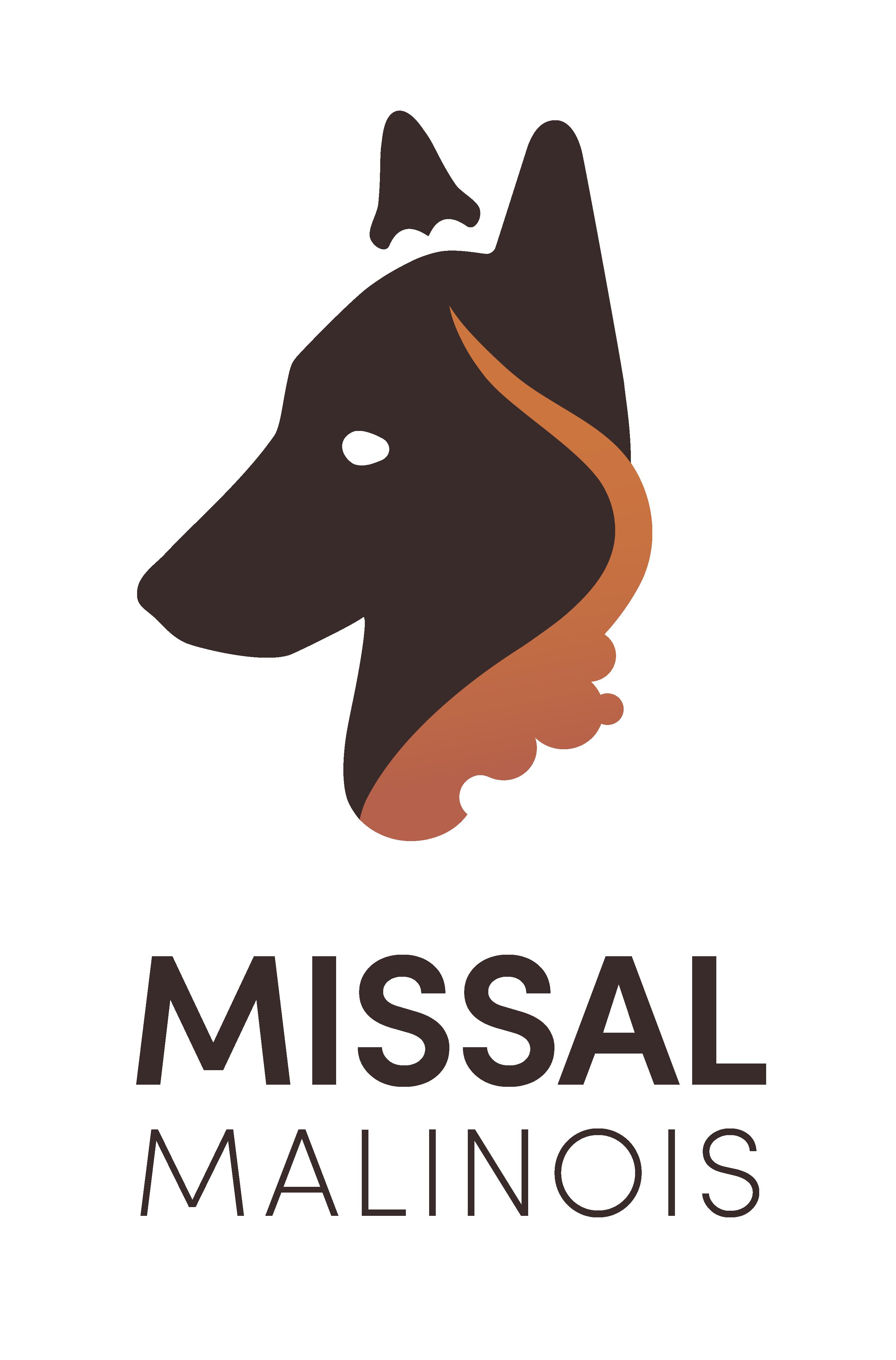 Missal Malinois