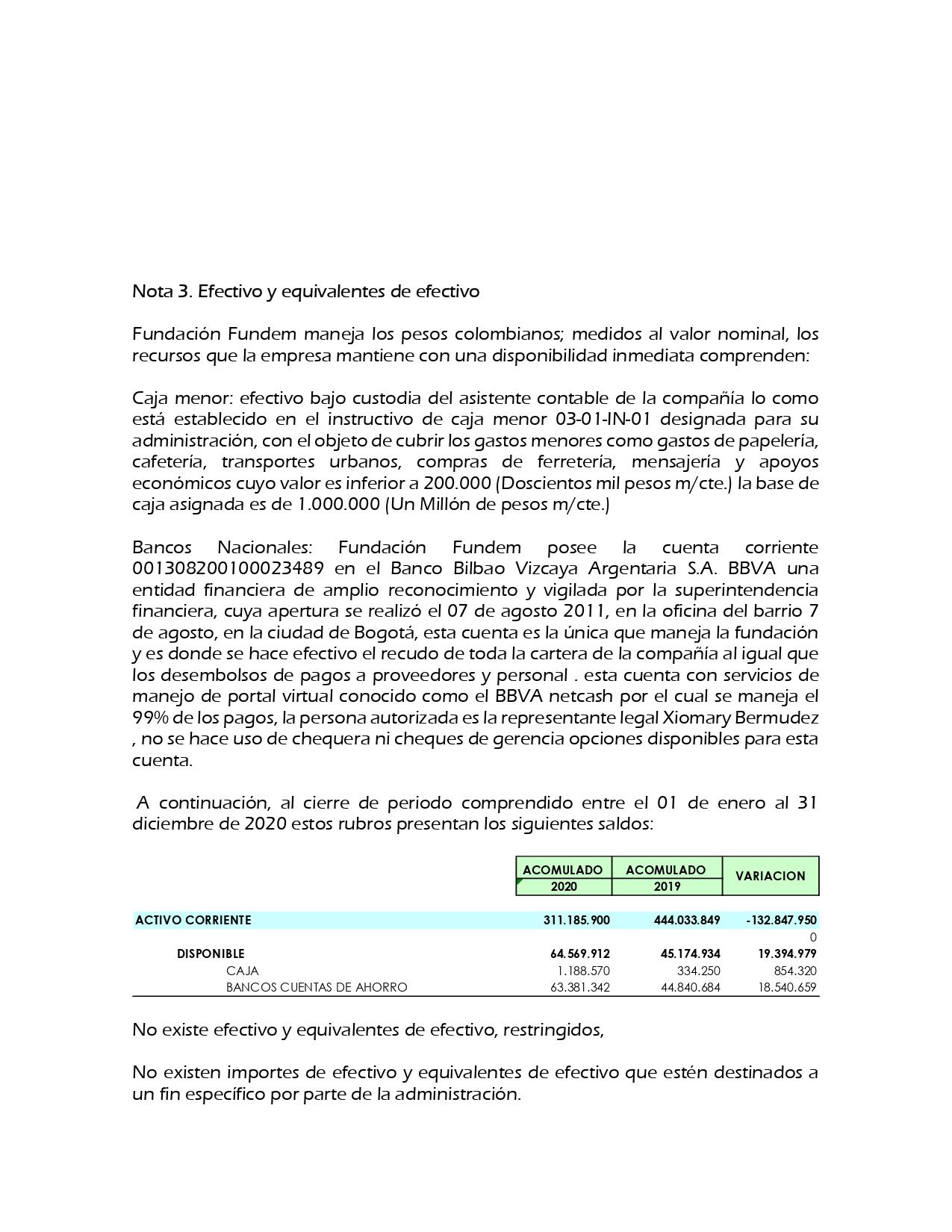 Estados Financieros Fundacion Fundem 2020_page-0013