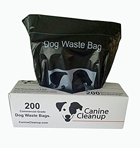Canine Cleanup