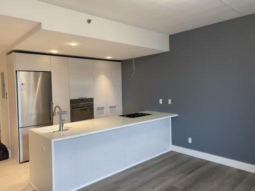 Astoria Queens Apartment Renovation