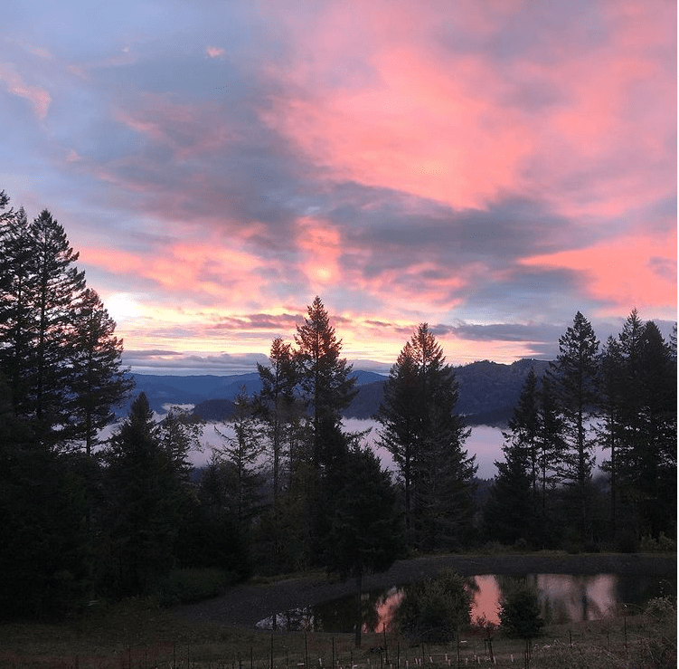 Sunset Photo Of Pond