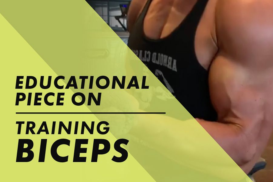 Bicep training education with Josh Bowmar: