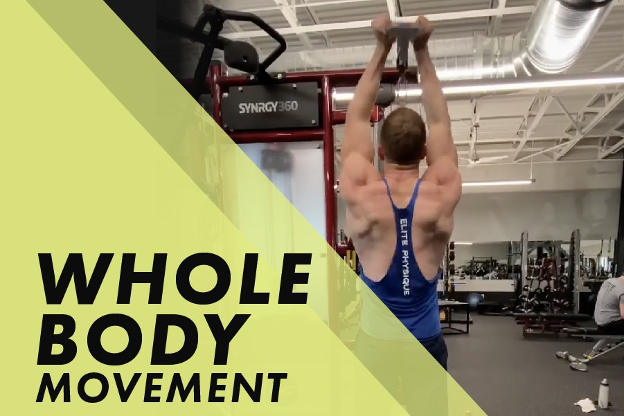 Whole Body Movement with Josh Bowmar: