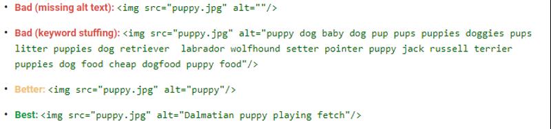 alt text examples