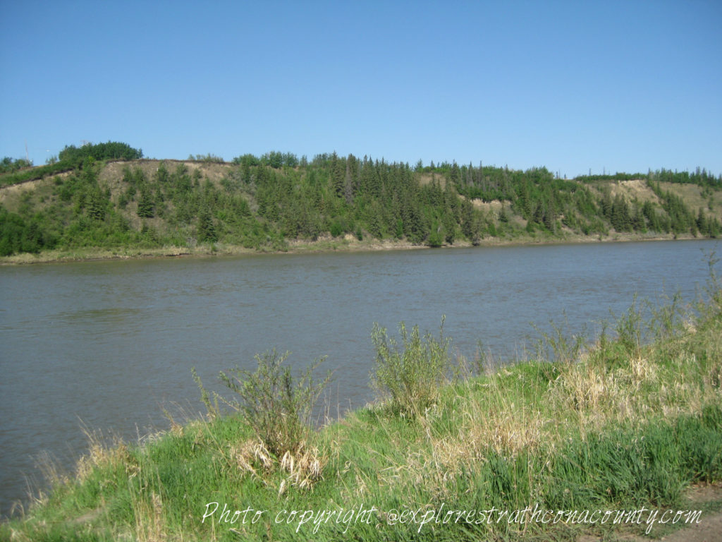 Riverside Nature Trail Strathcona County