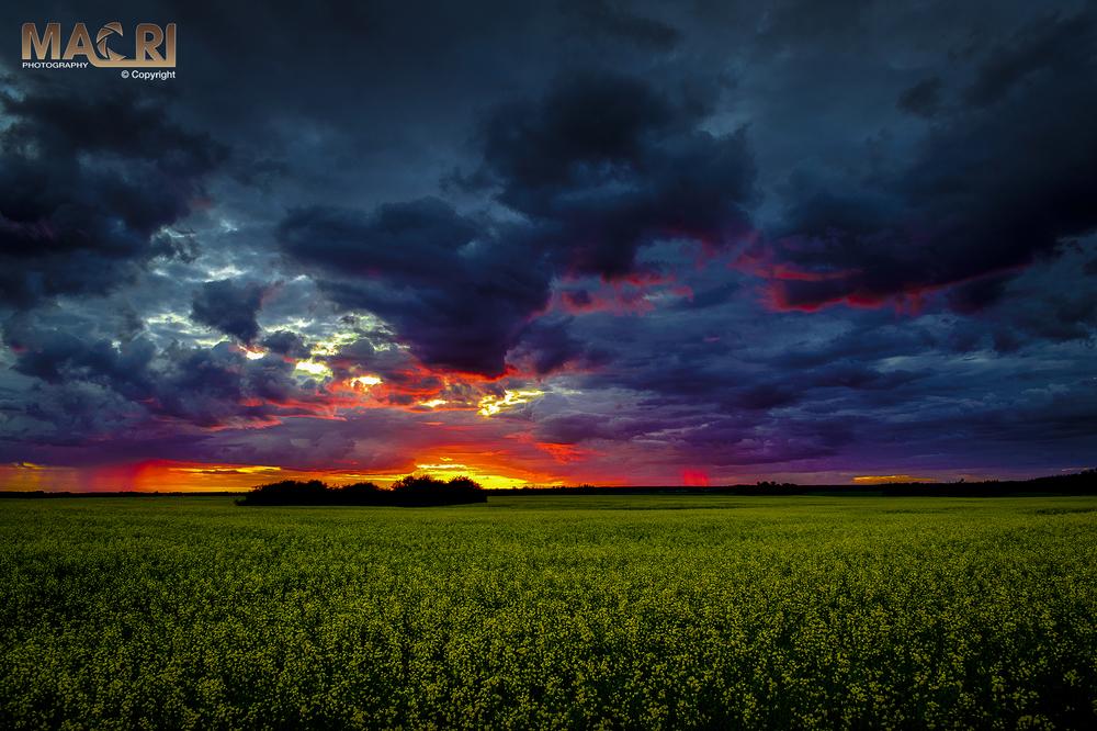 Strathcona+County+Sunset-LR©