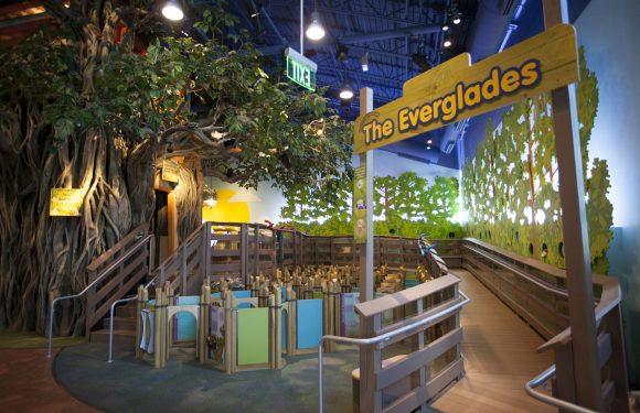 Journey Through the Everglades