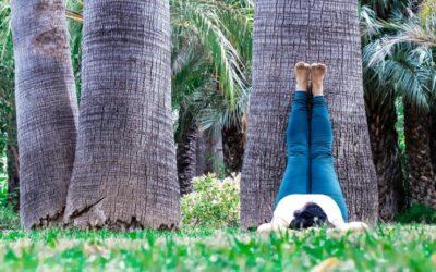 Dormir y Descansar. Yoga & Emociones