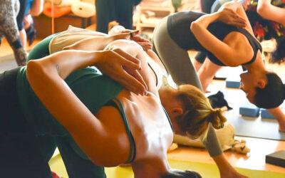 Pautas a tener en cuenta en una clase de Yoga