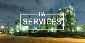 INVEST IN AFRICA SERVICES<br> - IIAS -