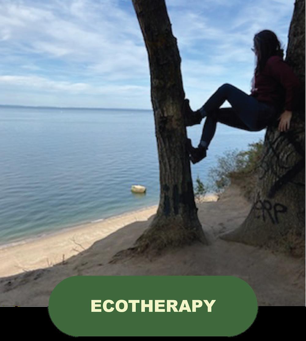 true north wellness ecotherapy