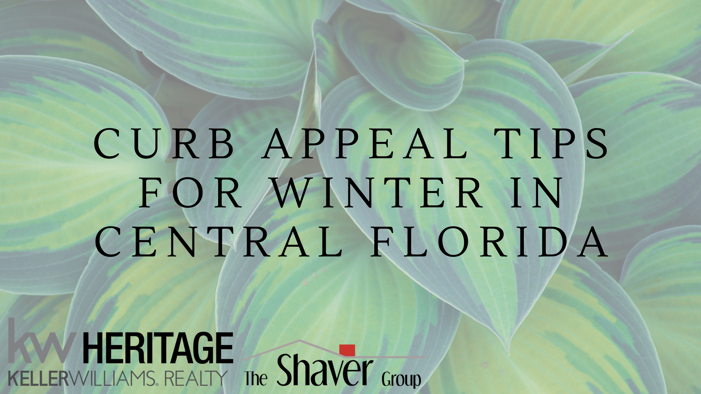 CURB APPEAL TIPS FOR WINTER IN CENTRAL FLORIDA