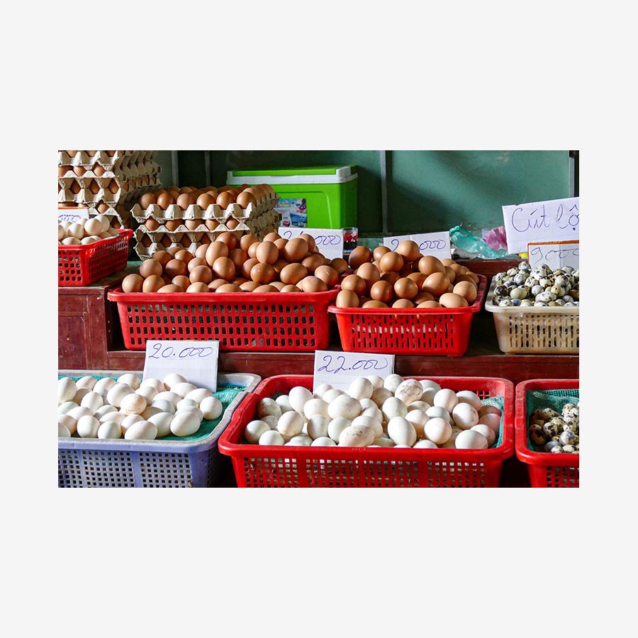 Eggs Galore, Vietnam