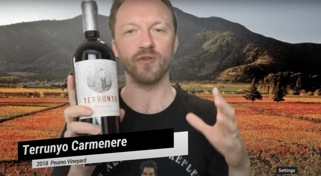 Terrunyo Carmenere 2018