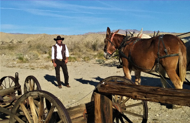 wagon tours camp host