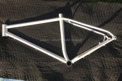 #160 Disco Ball over #73 Ice White - Bicycle Frame 000