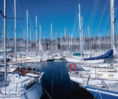A bunch of yacht docked on the sea