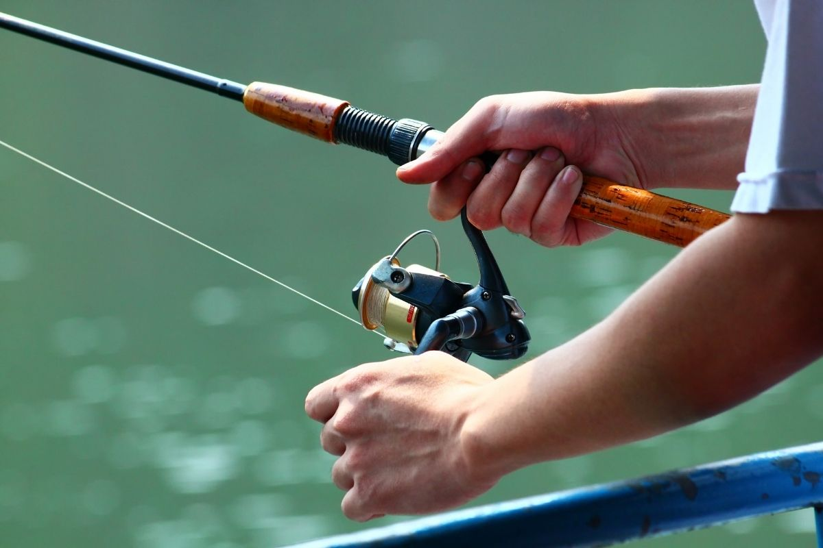 Top 10 Ultra Light Fishing Rods That Are Worth The Money