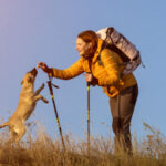 The Concord Guide To Hiking With Your Dog