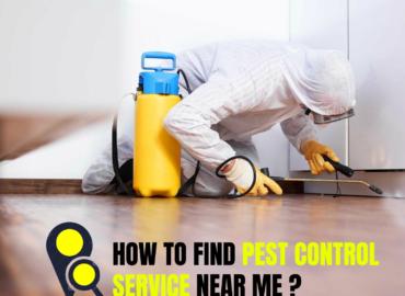 Pest control service near me