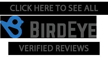 birdseye logo spray foam