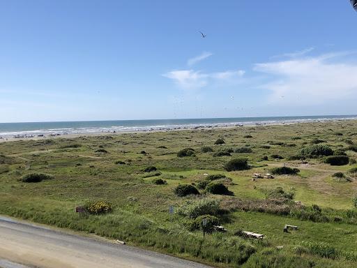 OC_Beach20Grass20and20Sand1