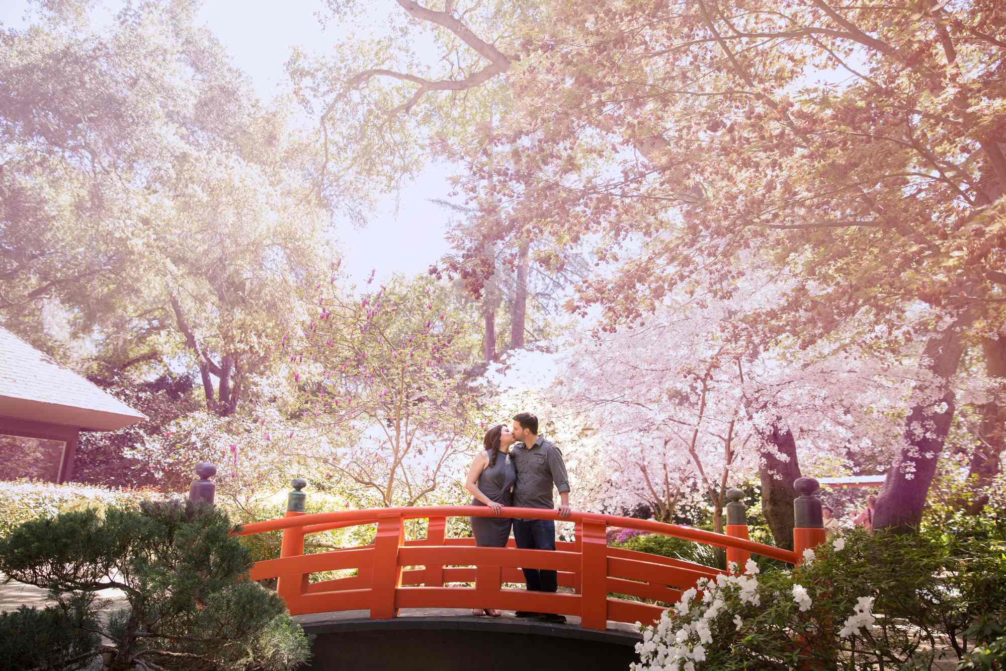 Romantic Shots