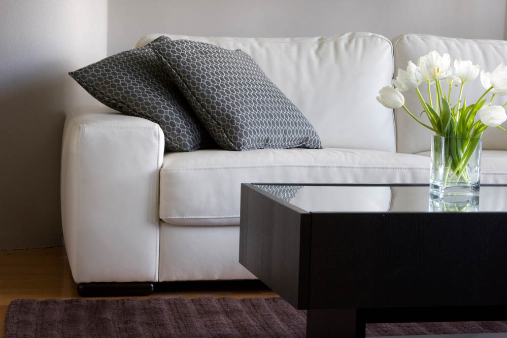 Upholstery Cleaning - Carpet One Cleaning - Northern New Jersey