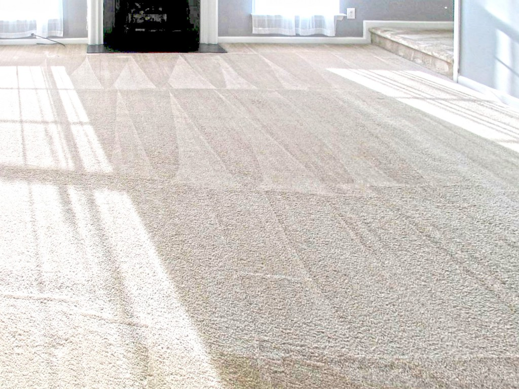 Vacuum Carpet - Carpet Cleaning - Cramers Carpet One Cleaning - Madison NJ
