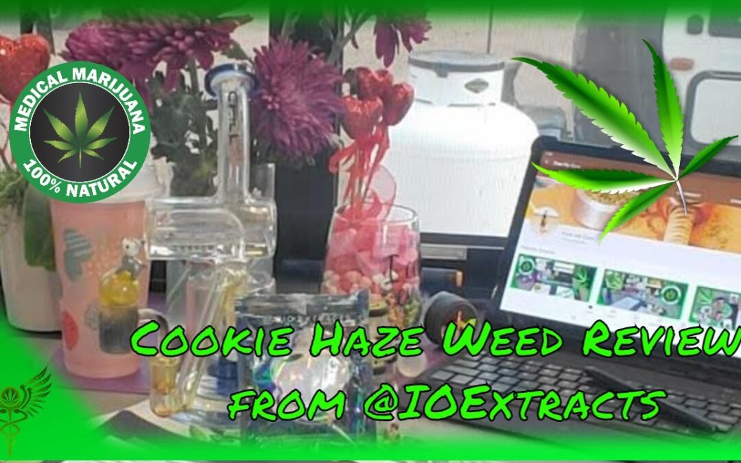 Cookie Haze Weed Review From @ioextracts