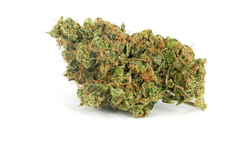 Blue Dream Weed Review from @NaturesMedicine