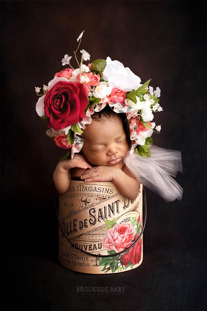 Ari – Brookside Baby-102