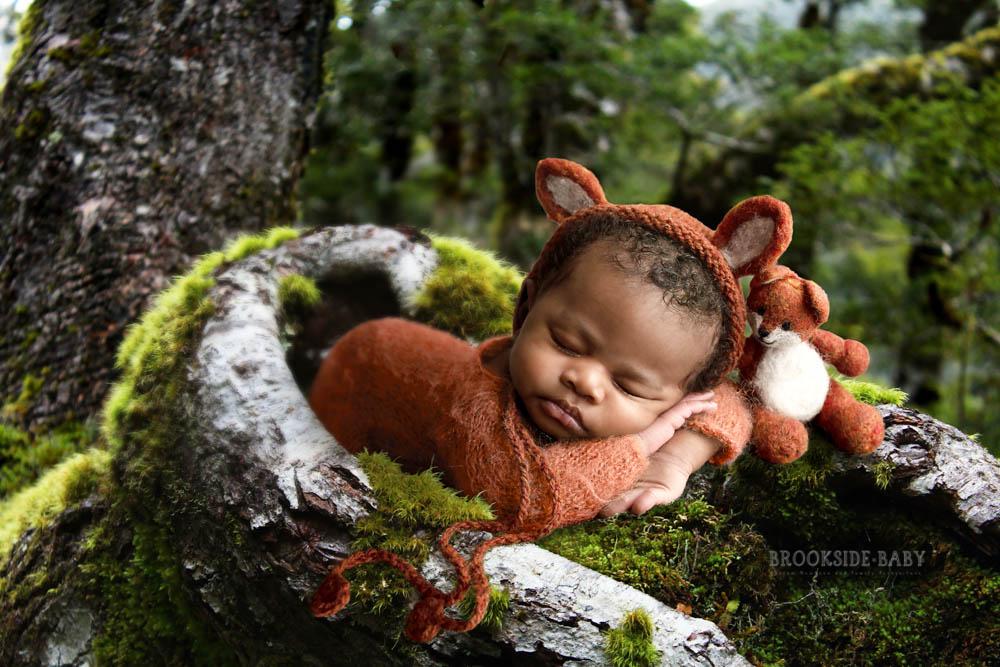 Bruce Brookside Baby 104