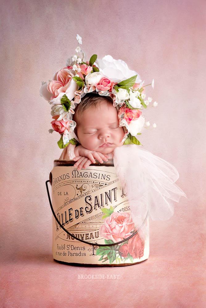 Chandler Brookside Baby 102