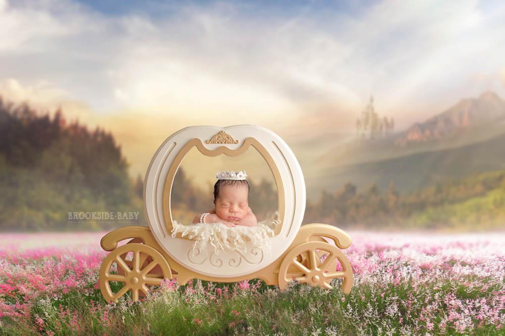 Kai'Yori Brookside Baby 101