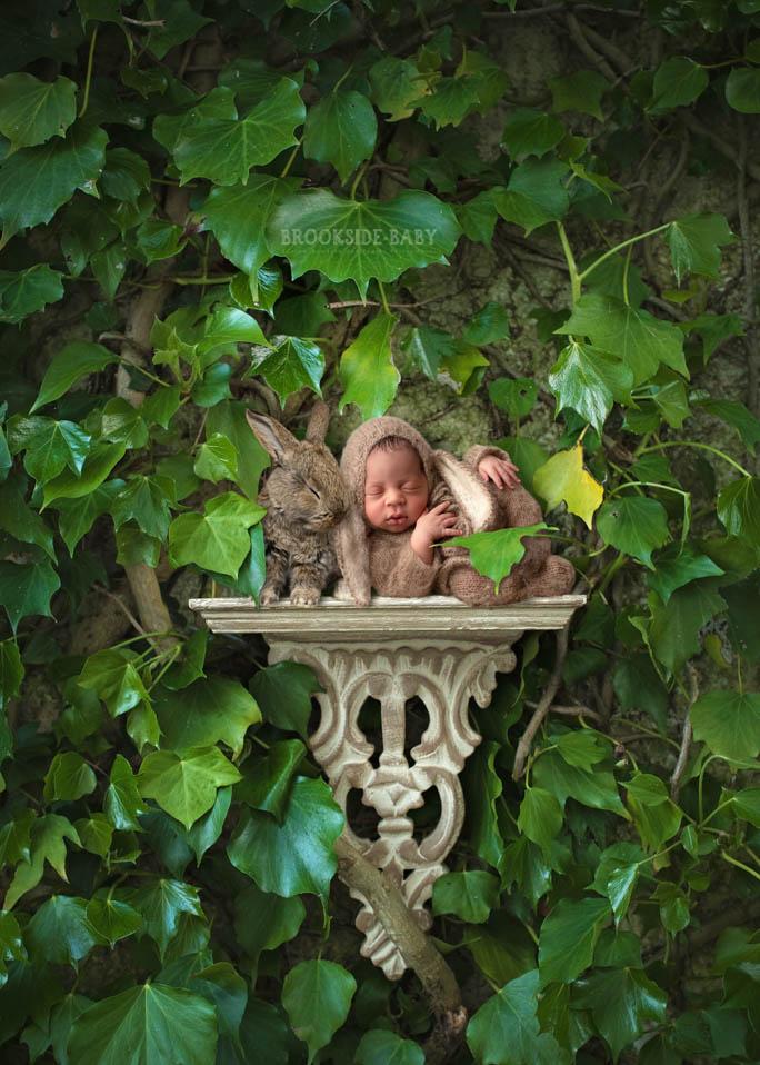 Kai'Yori Brookside Baby 103