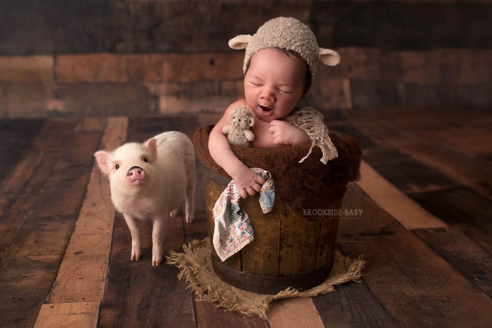 Rory Lane – Brookside Baby-102