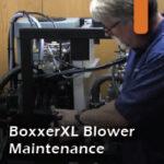 Boxxer XL blower